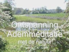 Ademmeditatie met natuur