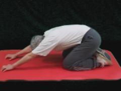 Strekken  rug in kniestand  (kort)